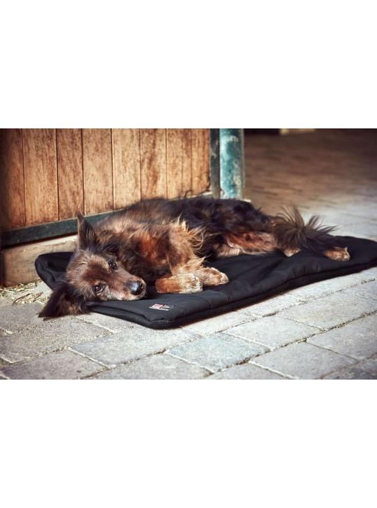 Catago FIR-Tech Pro Hundepude
