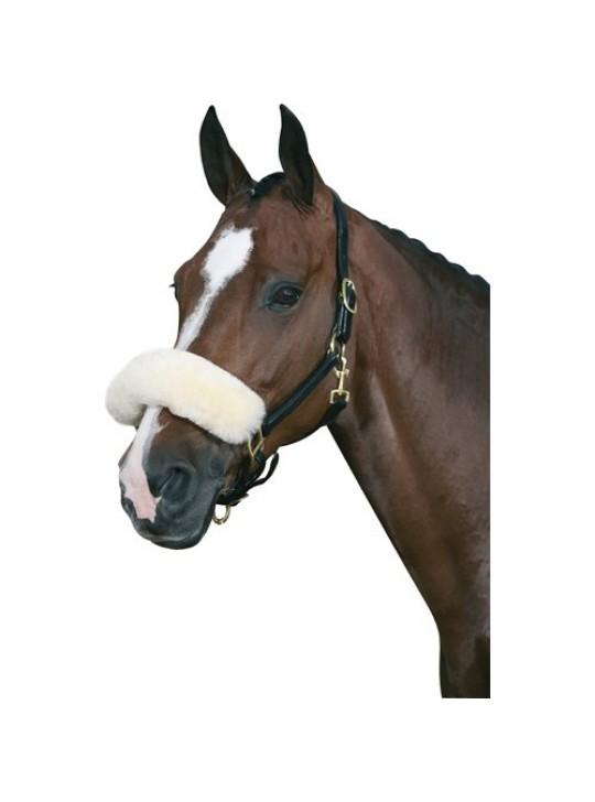 HG Lammebeskytter til næse